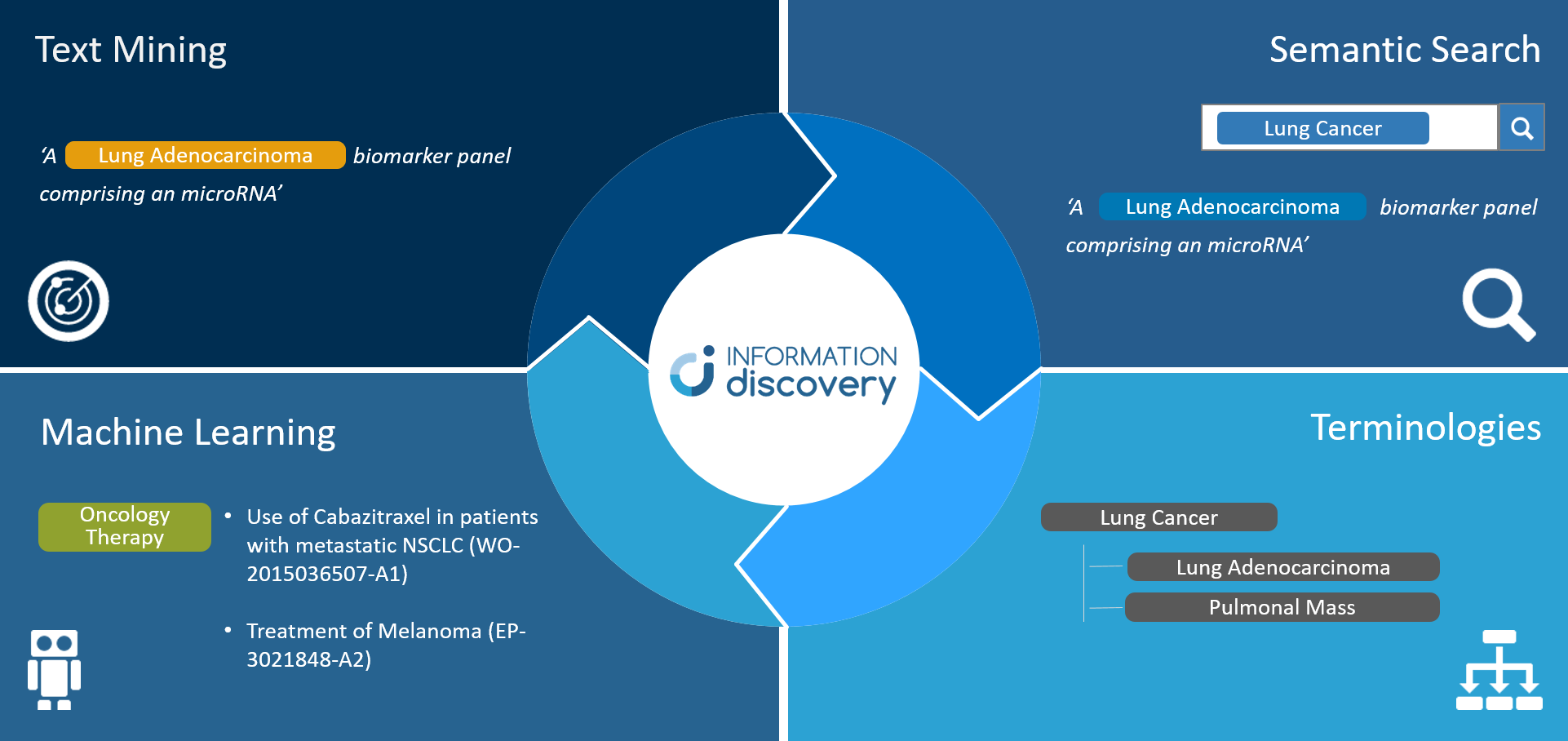 Information Discovery Overview Averbis